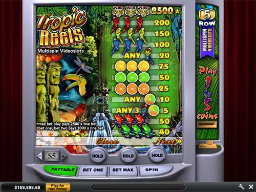 free Tropic Reels slot payout